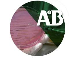 Limpiador desinfectante de superficies